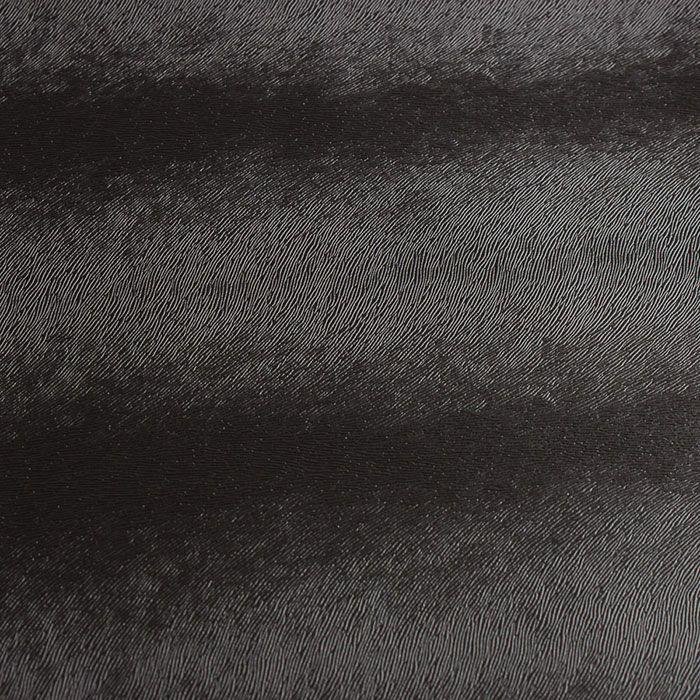 potro-negro